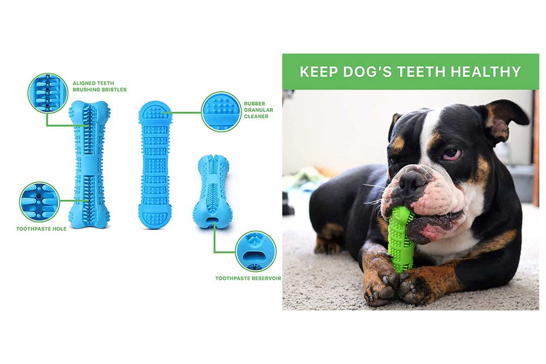 Doggie Dental Bone