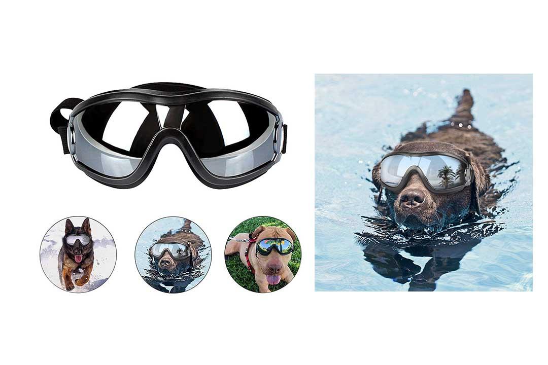 Loggipet Dog Goggles