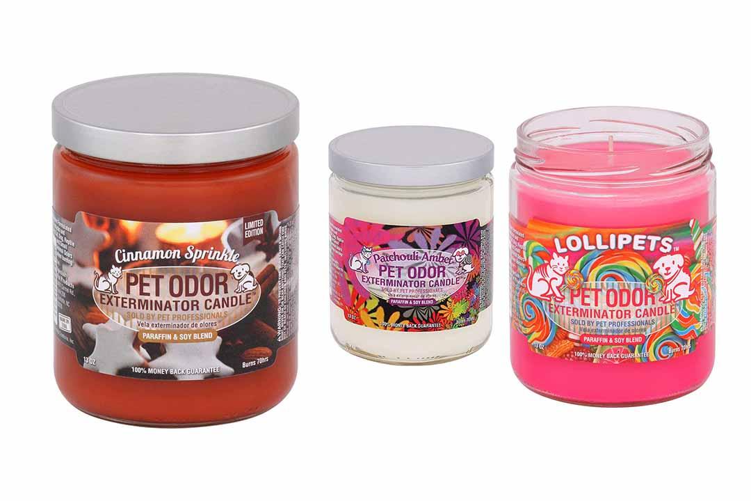 Pet Odor Exterminator Candle Orange Lemon Splash Jar
