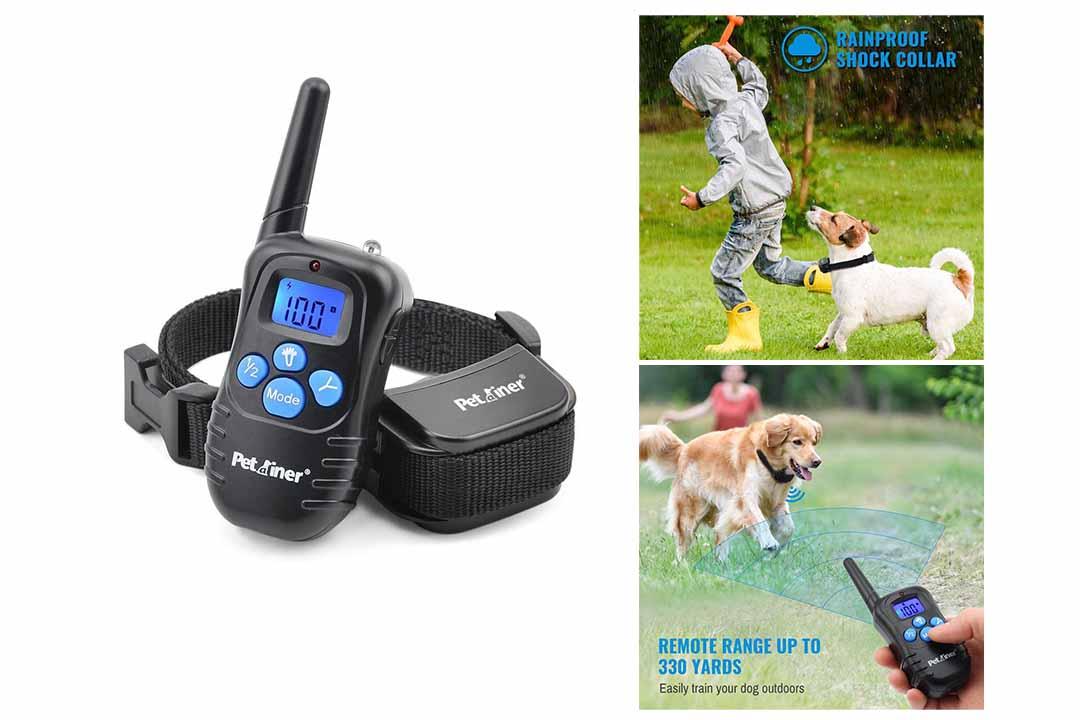 Petrainer PET998DRB1 Rainproof Dog Shock Collar