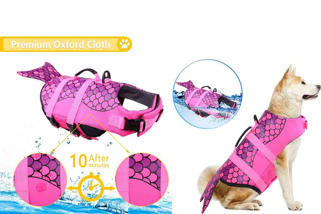 Ripstop Pet Floatation Life Vest