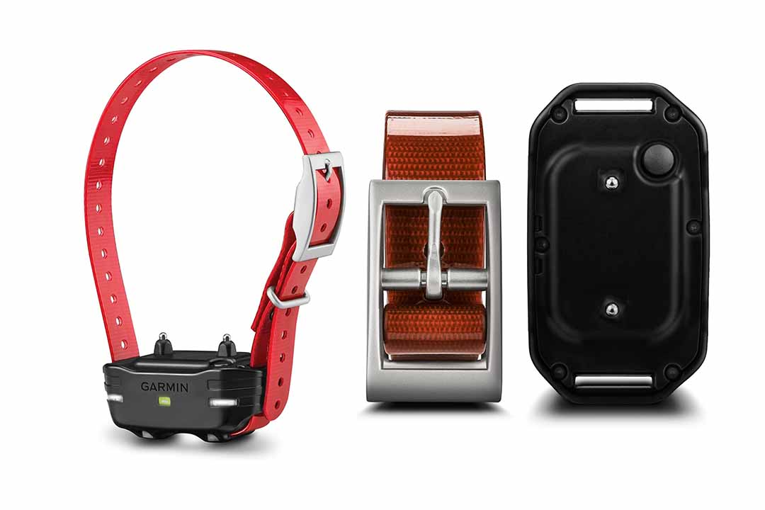 Garmin PT10 Dog Device