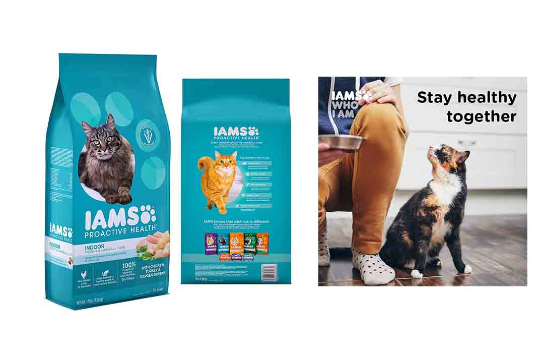 IAMS Proactive Health Care Dry Cat Food