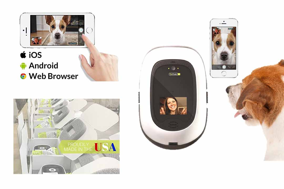PetChatz HD: Two-way Premium Audio/HD Video Camera
