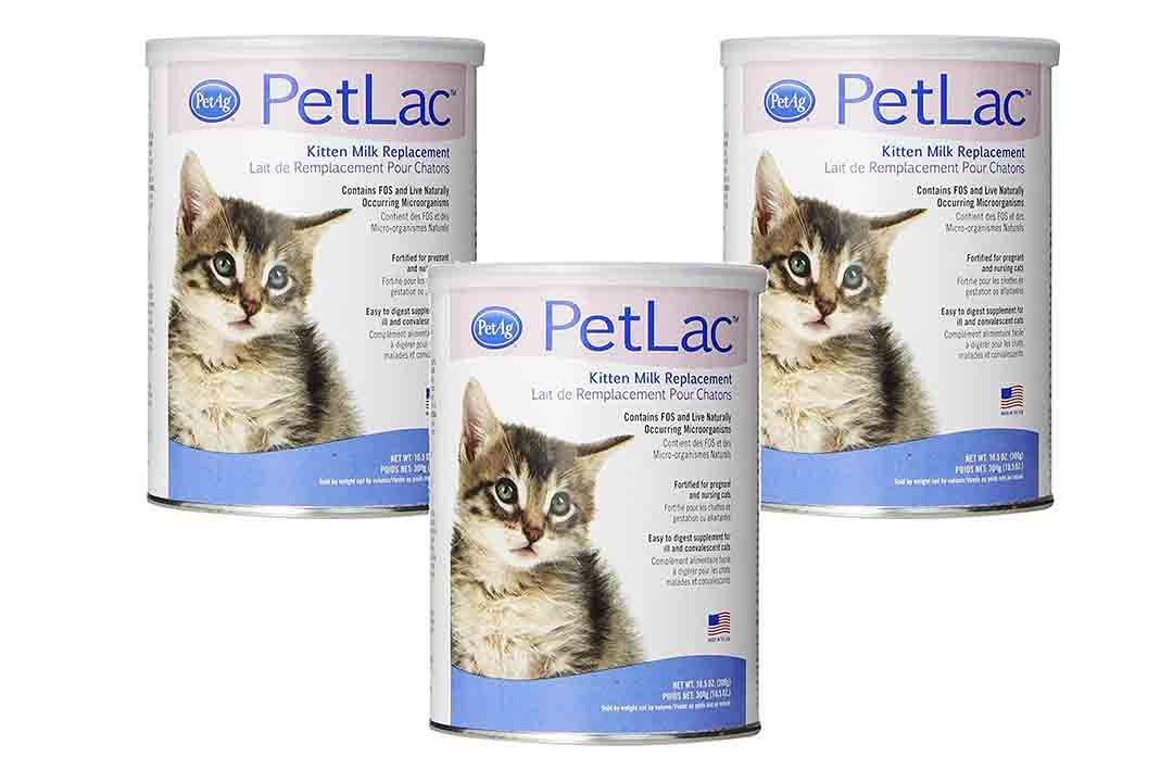 PetLac Milk Powder for Kittens