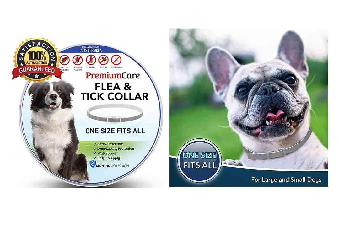 Premium Flea and Tick Collar for Dogs