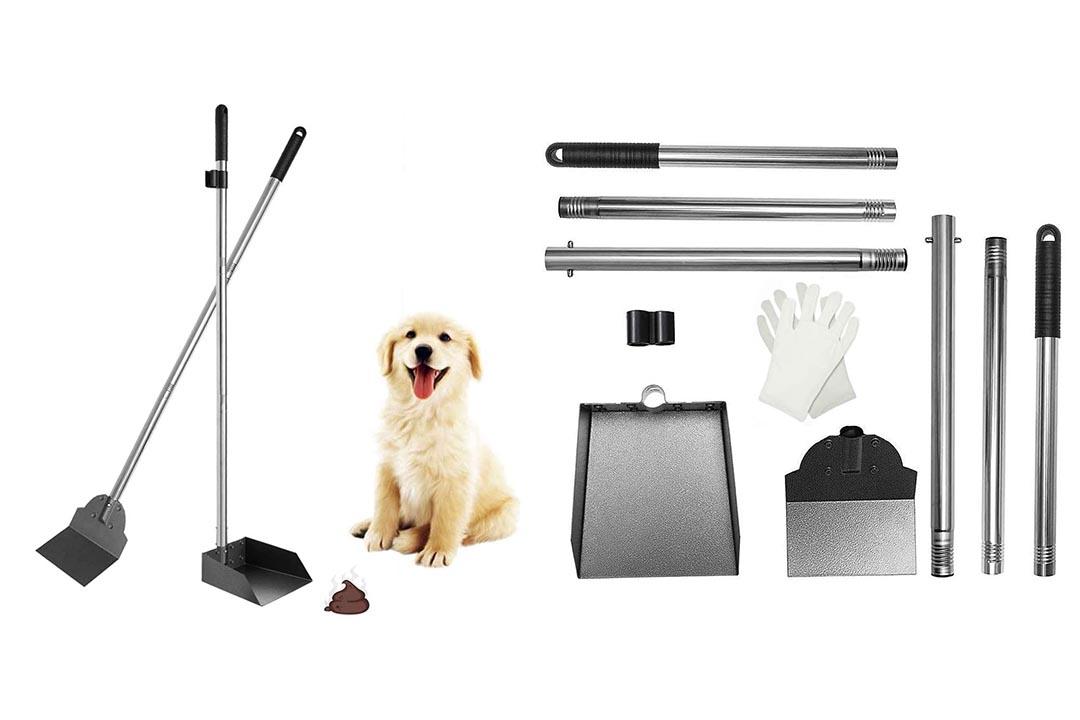 SCENEREAL Pet Poop Tray & Spade Set