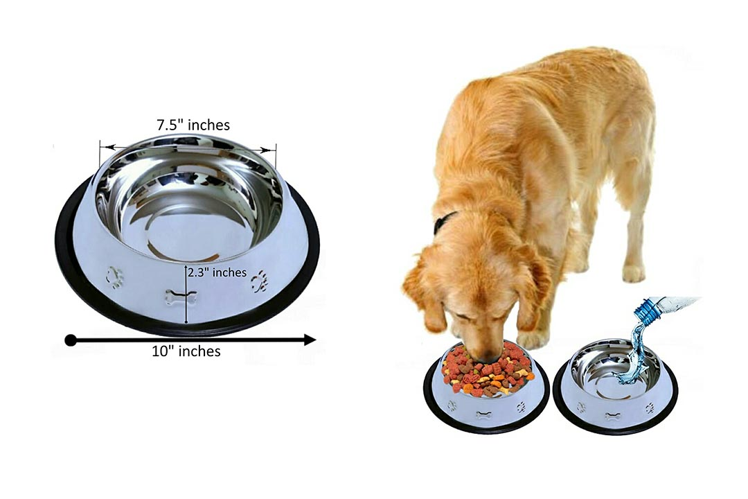 Set of 2 Etched Food Grade Stainless Steel Dog Bowls