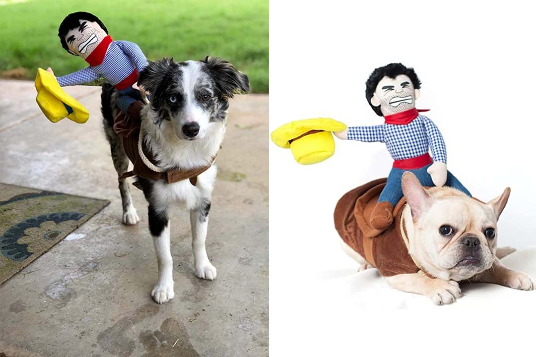 YOUDirect Cowboy Rider Dog Costume Funny Dog Halloween Costume Knight Style