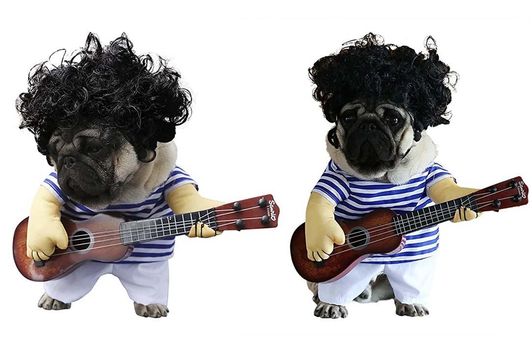 S-Lifeeling Pet Guitar Costume Dog Costumes Guitarist Player
