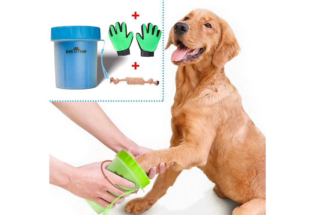 Top 10 Best Portable Paw Washer for Dogs of 2021 Review