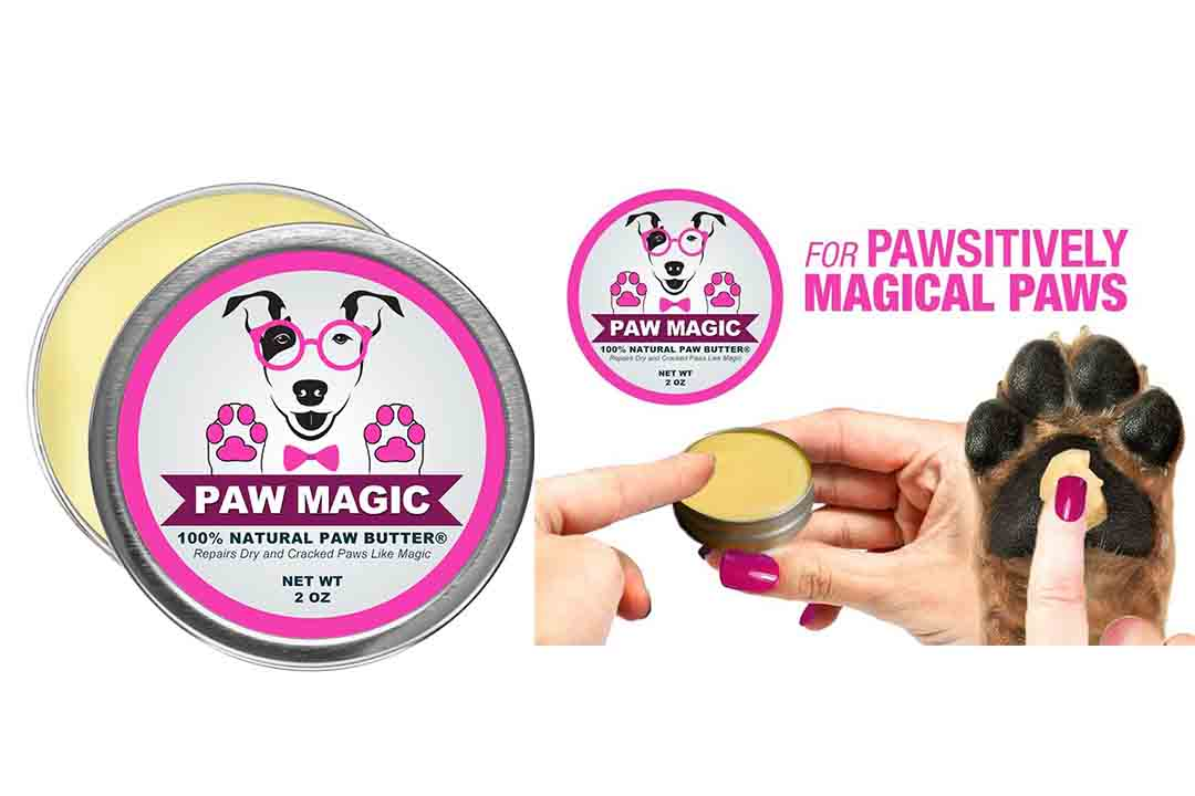 Paw Magic