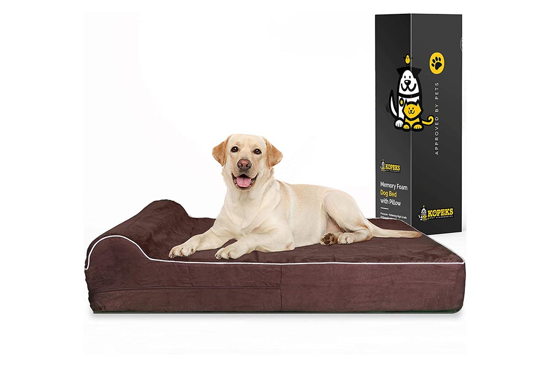 7-inch Thick High-Grade Orthopedic Memory Foam Dog Bed