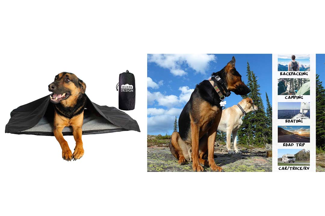 Portable, Inflatable Dog Travel Bed