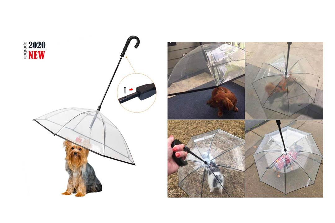 Enjoying Pet Umbrella Dog Umbrella with Leash Rain