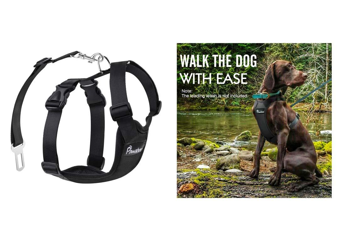 Pawaboo Dog Safety