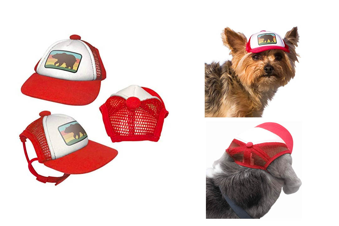 PupLid Trucker Hats for Dogs