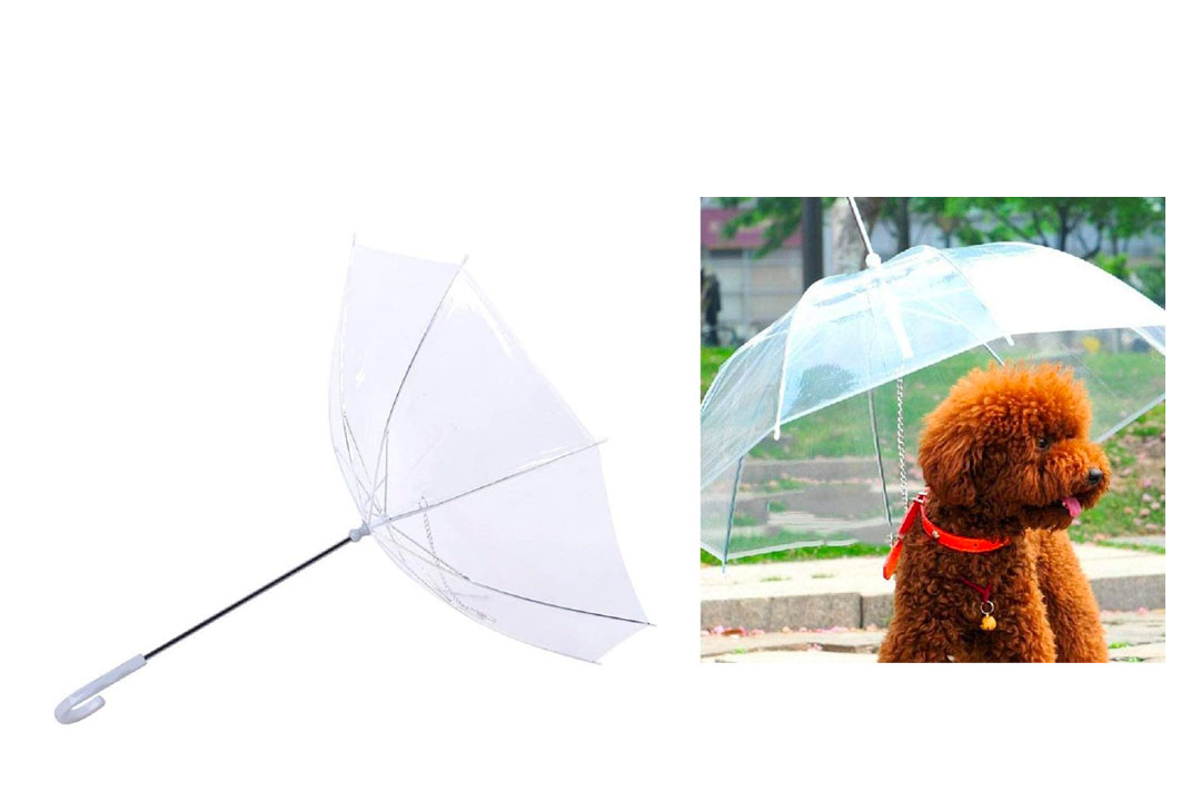 MWD Transparent Pet Umbrella