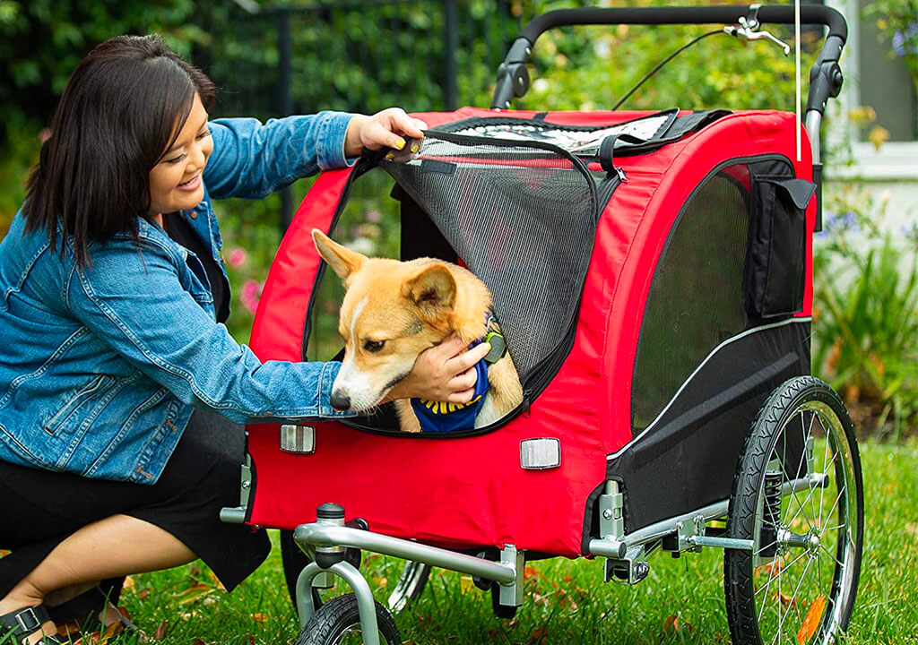 Top 10 Best Dog Bike Trailer of 2021 Review