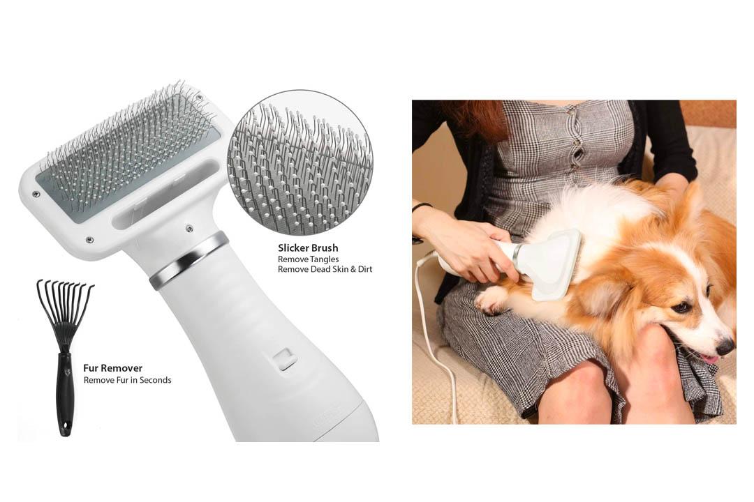 iPettie 2 in 1 Pet Grooming