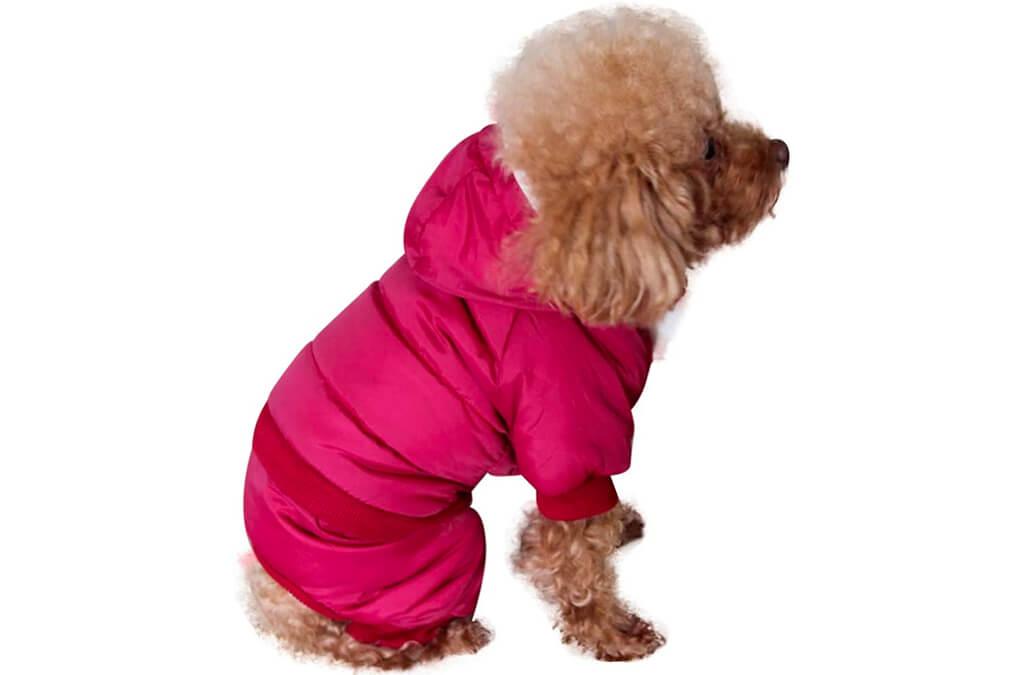 3. JoyDaog Fleece Lined Dog Coat