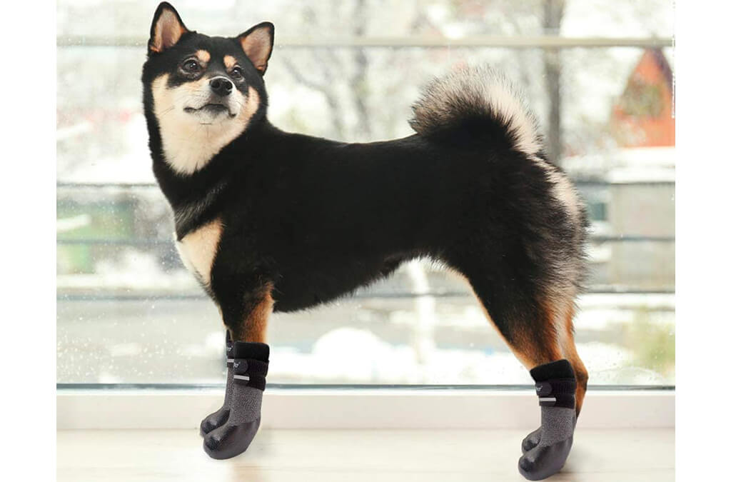 4. BINGPET Dog Socks for Hardwood Floors