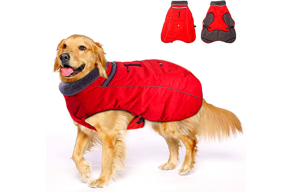 8. Winter Coats for Dogs with Bag